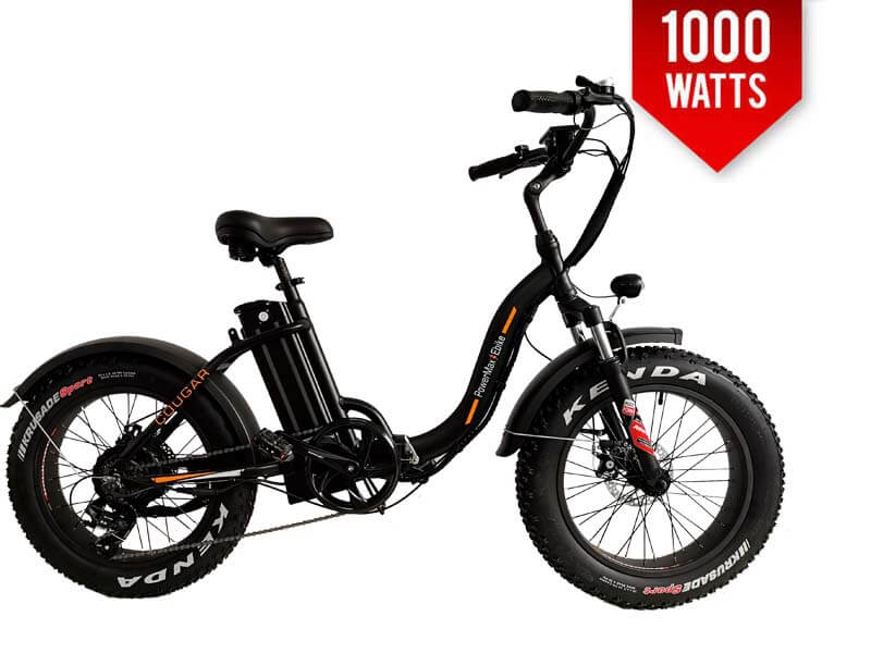 https://powermaxebike.com/wp-content/uploads/2019/10/cougar-black-1-1.jpg